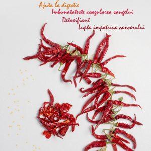 Fotografie alimentaraConcept - Ardei iute Cayenne pe fundal alb